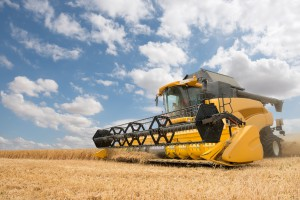 close view of modern combine harvester in action.
